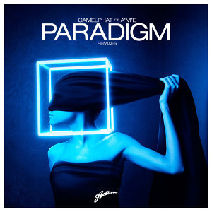 Paradigm (Remixes)