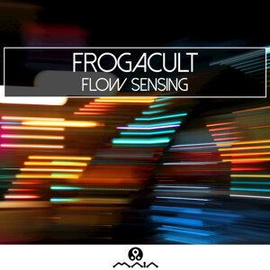 Flow Sensing