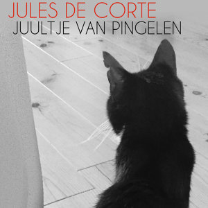 Juultje Van Pingelen