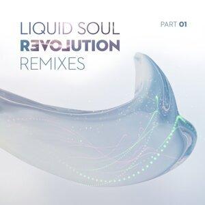 Revolution Remixes, Pt. 01
