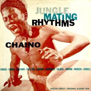 Jungle Mating Rhythms - Original Album 1958