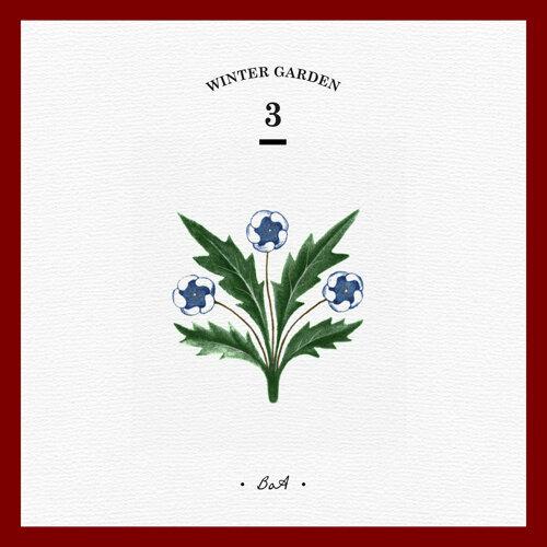 Christmas Paradise - WINTER GARDEN