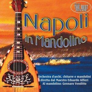 Napoli in mandolino
