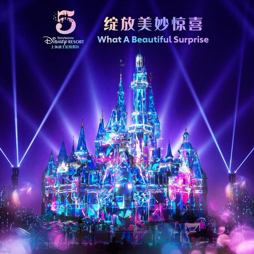 绽放美妙惊喜 - 上海迪士尼度假区五周年庆主题歌曲