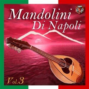 Mandolini di Napoli, Vol. 3