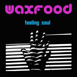 Feeling Soul
