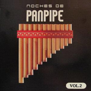 Noches de Panpipe Vol. 2