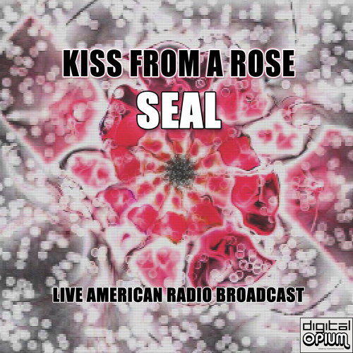 Kiss From a Rose - Live