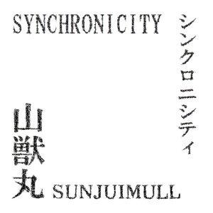 SYNCHRONICITY (SYNCHRONICITY)