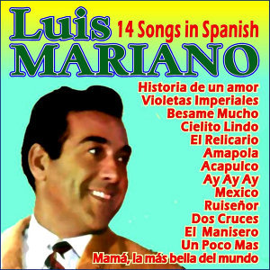 14 Songs in Spanish