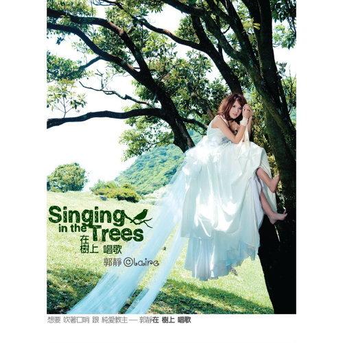 在树上唱歌