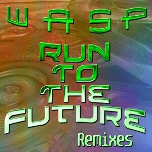Run to the Future - Remixes
