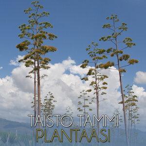 Plantaasi