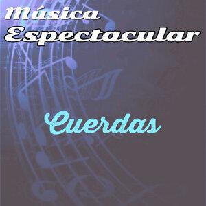 Música Espectacular, Cuerdas
