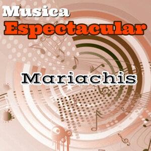 Musica Espectacular, Mariachi