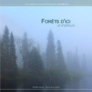 Naturophonia: Forêts d'ici et d'ailleurs