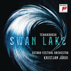 Tchaikovsky: Swan Lake Ballet Music