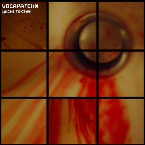 Vocapatch