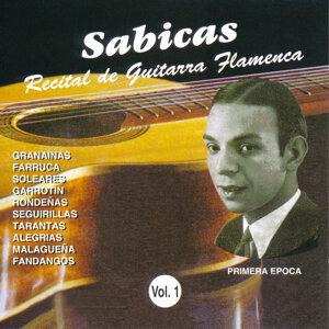 Recital de Guitarra Flamenca Vol. 1