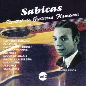 Recital de Guitarra Flamenca Vol. 2