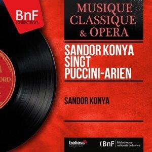 Sándor Kónya singt Puccini-Arien - Mono Version