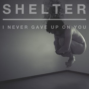 I Never Gave Up on You