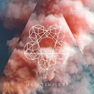 Maze Temple