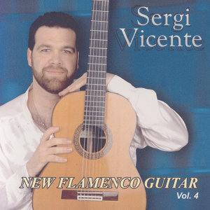 New Flamenco Guitar 4
