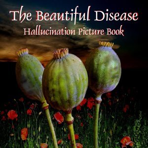 Hallucination Picture Book