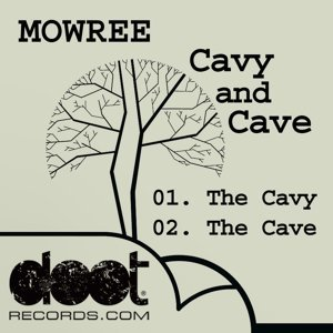 Cavy And Cave