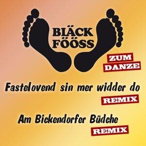 Bläck Fööss - Remix zum danze