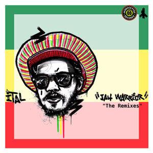 Jah Warrior: The Remixes