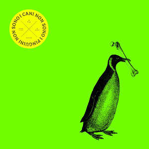 I cani non sono i pinguini