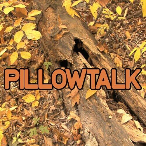 Pillowtalk -Tribute to Zayn