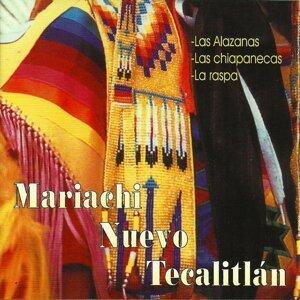 Mariachi Nuevo Tecalitlan, Vol. 2