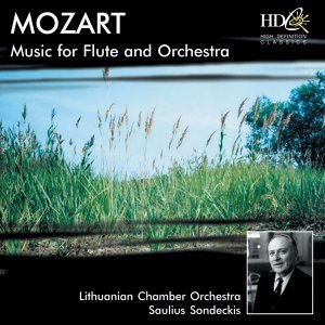 Music for Flute and Orchestra