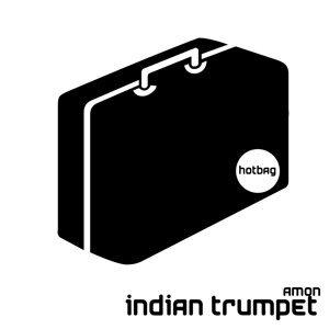 Indian Trumpet