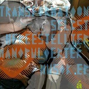 Transformation selbst hergestellter  manipulierter Musik