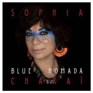 Blue Nomada
