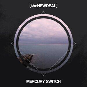 Mercury Switch