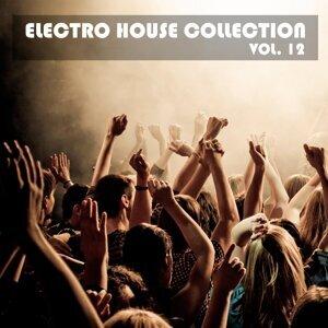 Electro House Collection, Vol. 12
