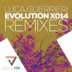 Evolution X014 Remixes