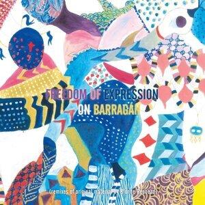Freedom of Expression on Barragán