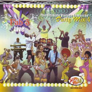 Fab 5 Live - Party Mix Vol. 4