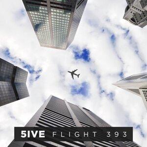 Flight 393