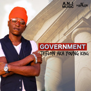 Government - Single