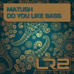 Do You Like Bass