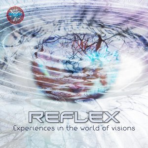 Experiences in the World of Visions