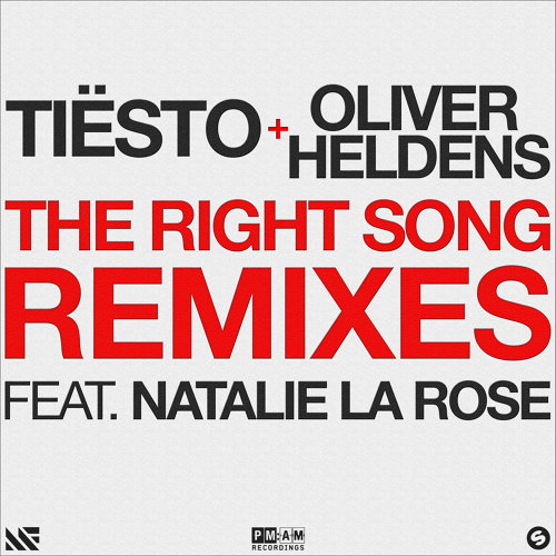The Right Song - Remixes