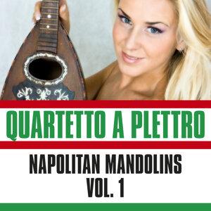 Napolitans Mandolins, Vol. 1